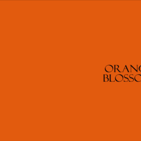 Orange Blossom by Clea Anisetty (IND/GBR)