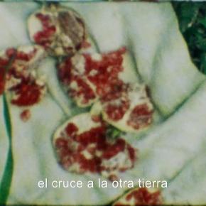 Corteza neón by Bruno Varela(MEX)